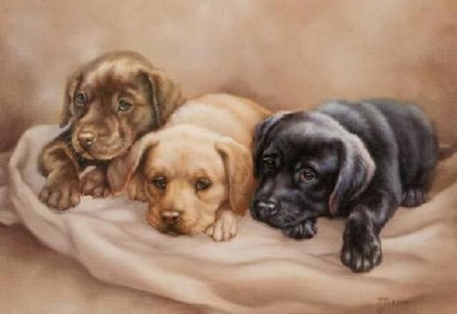 Детские рисунки щенков